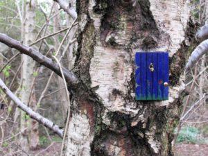 Foto Feentür an Baum